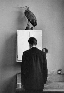 Andre Kartesz